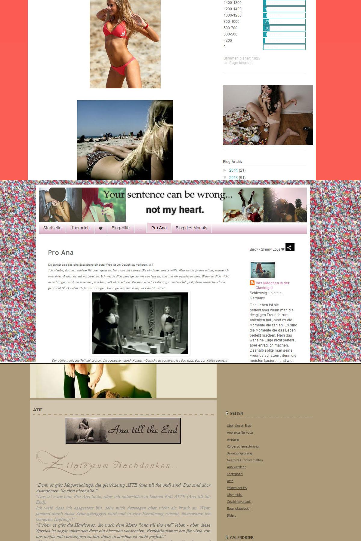 ProAna Blogs