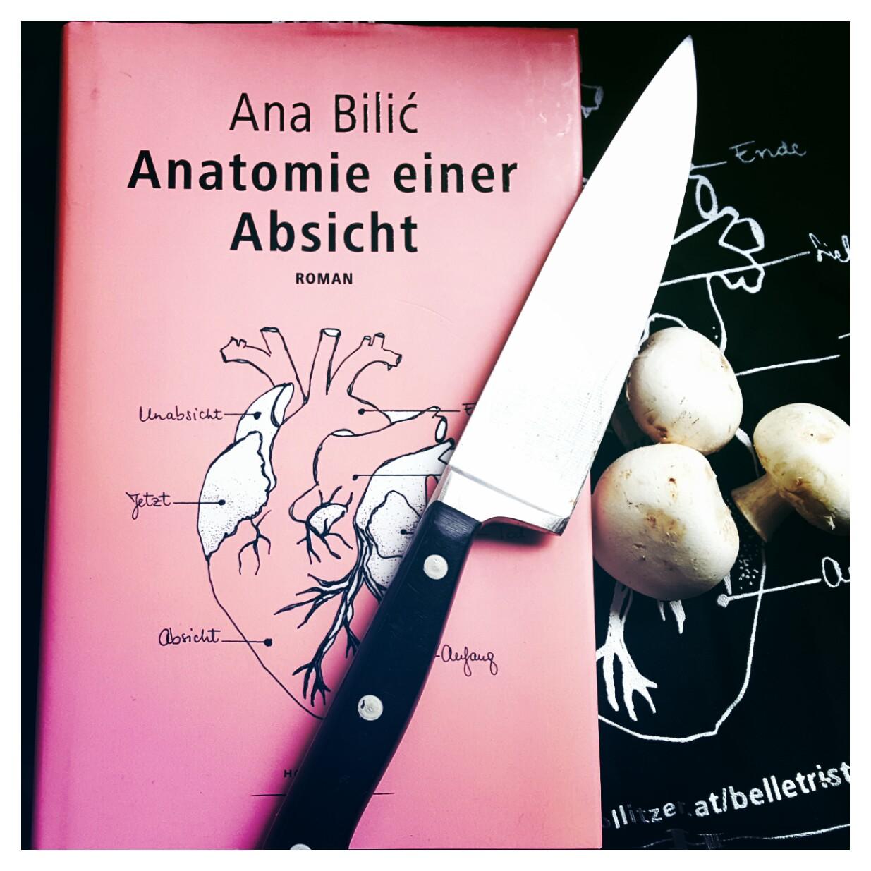 Ana Bilic – Anatomie einer Absicht