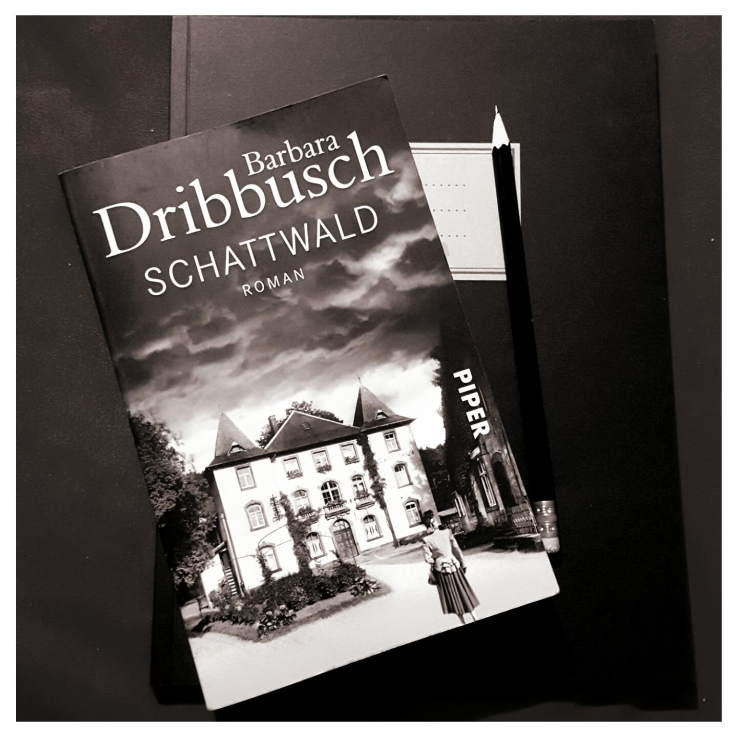 [Rezension] Barbara Dribbusch – Schwattwald