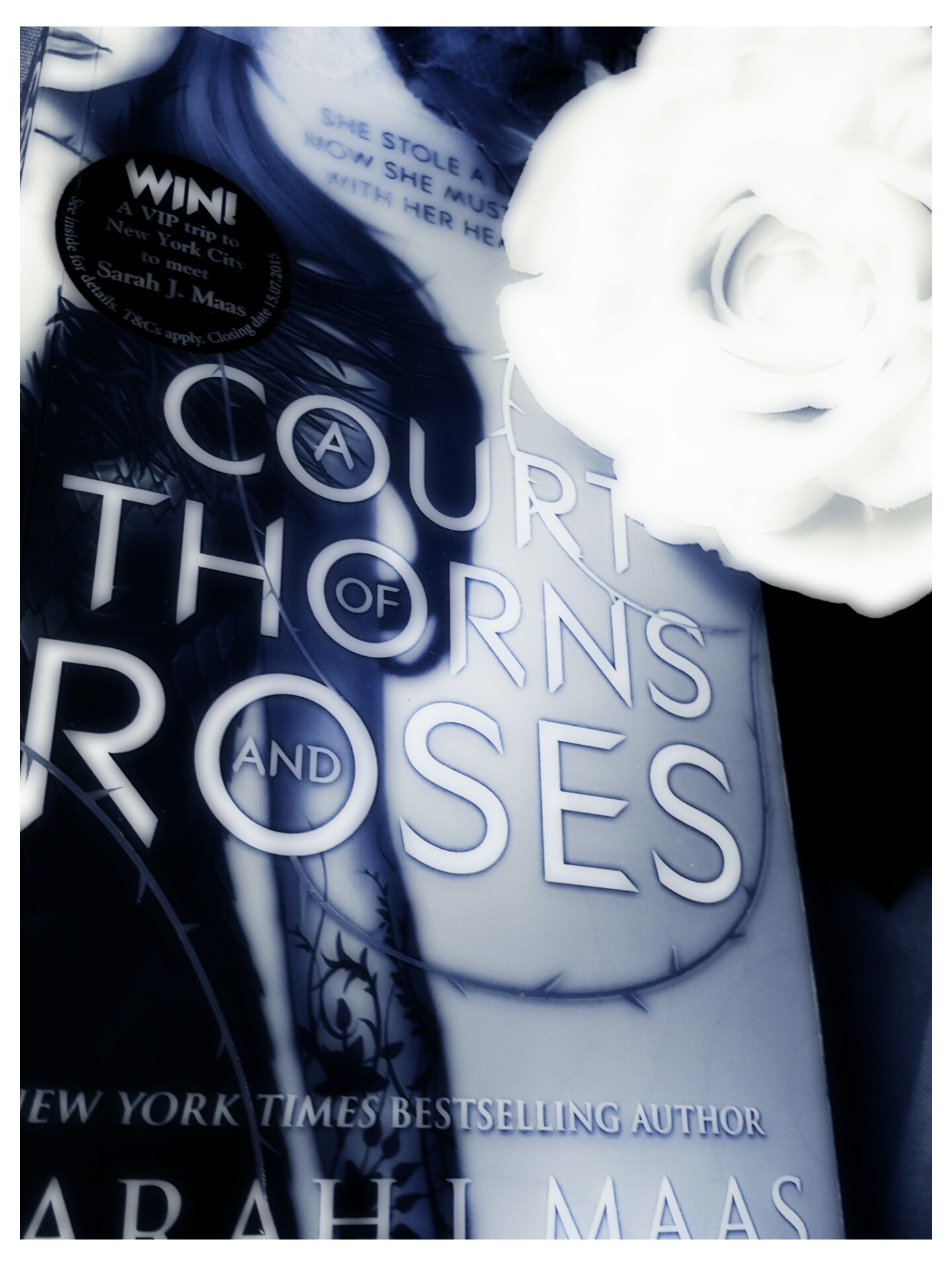 [Rezension] Sarah J. Maas – A Court of Thorns and Roses