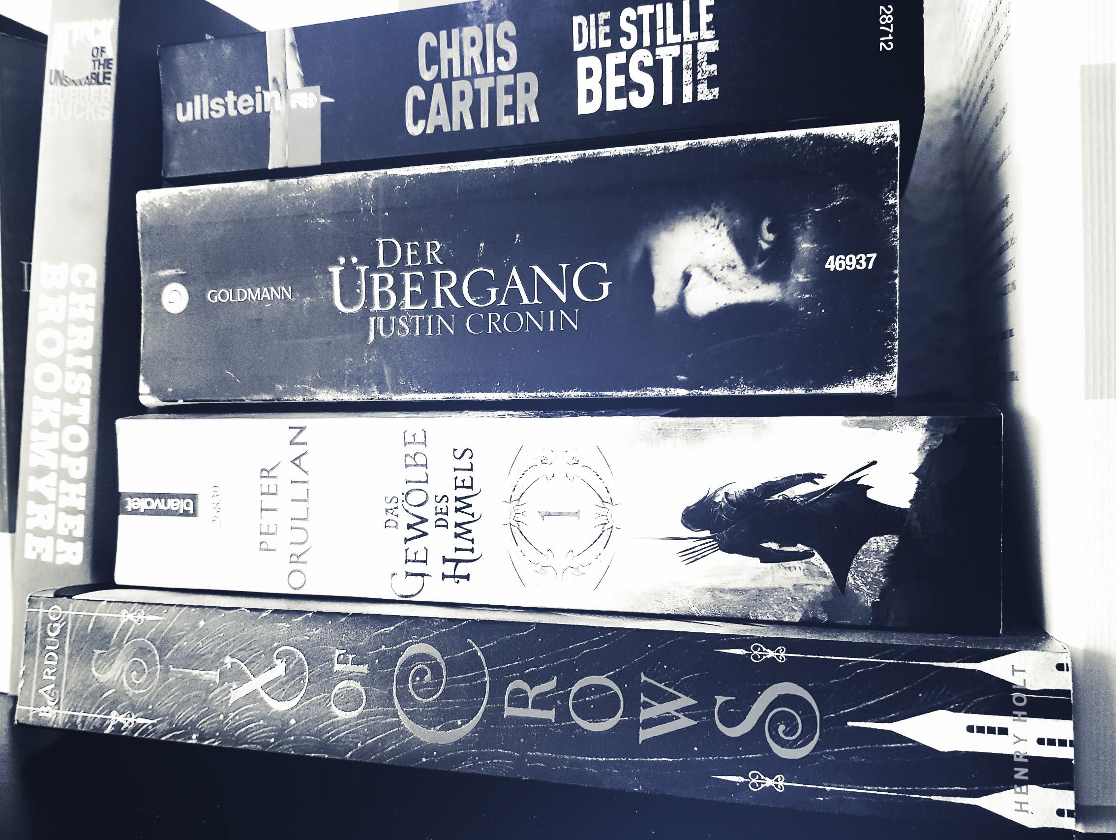 [Federlesen] Über den Stapel ungelesener Bücher und die Unsinnigkeit von Buchkaufverboten