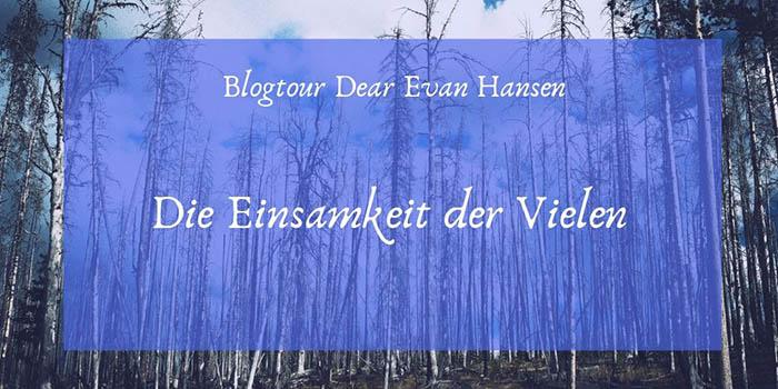 [Blogtour] Dear Evan Hansen. Die Einsamkeit der Vielen
