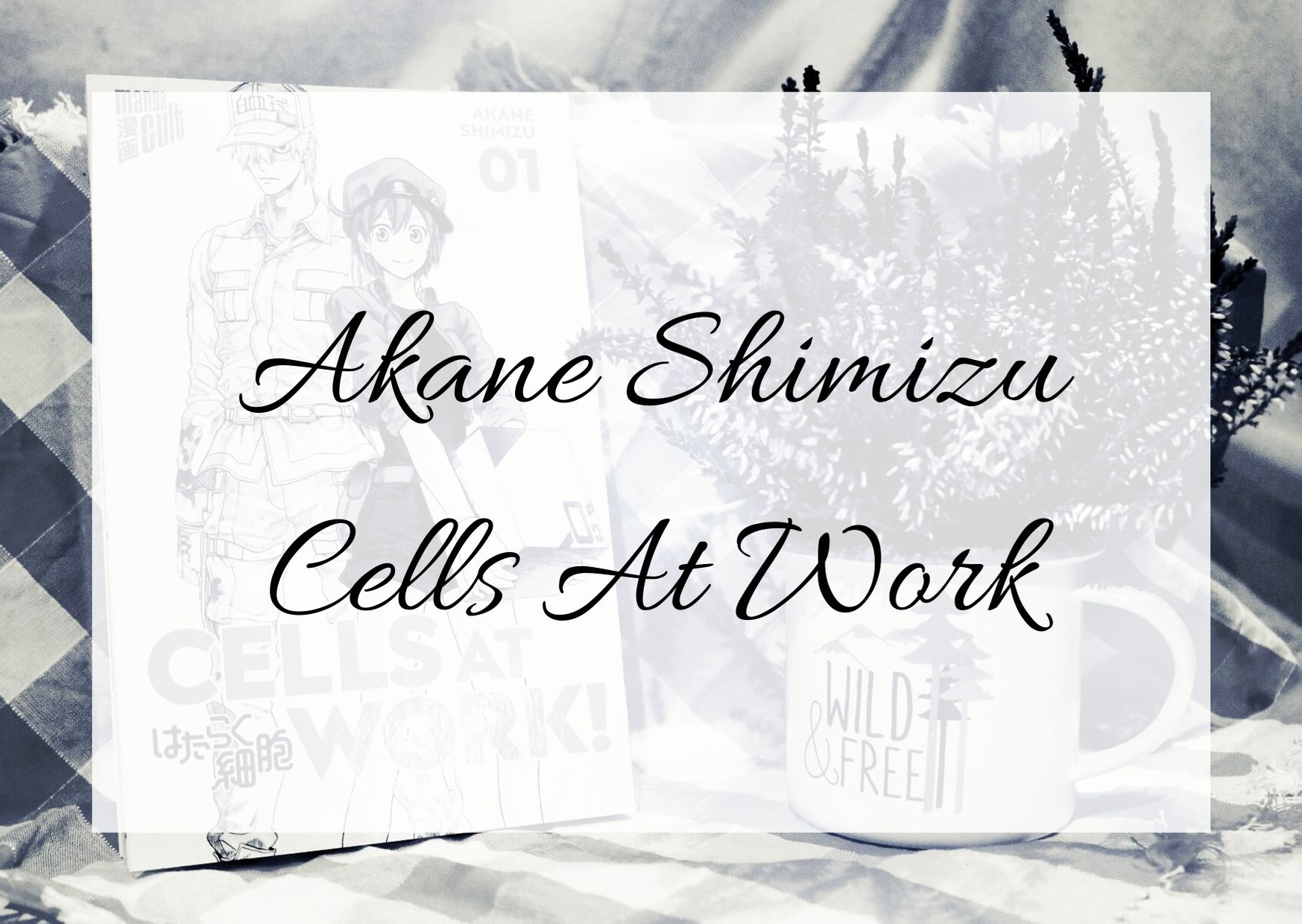 [Rezension] Akane Shimizu – Cells at Work 1